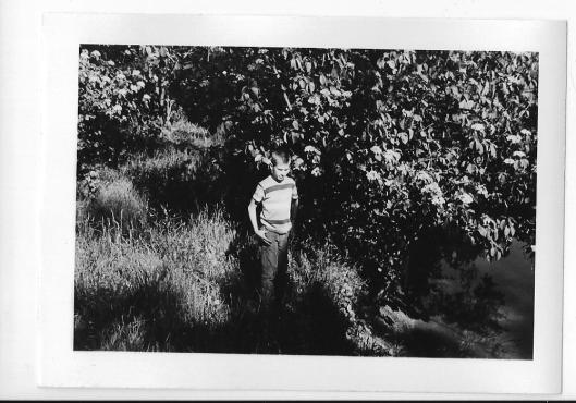 Mt. Pleasant- 1965