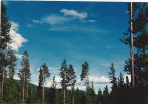 Clouds-Grand Tetons campground, summer 1987