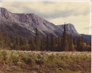 Montana outside Glacier Park 1981