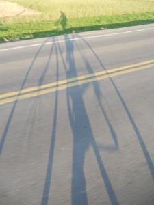 riding along...  my shadow stretches in motion
