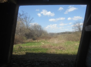 old barn shifting  in time the view out back