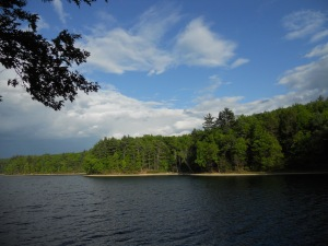 looking  back at the mystic waters... Walden Pond
