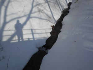 from the bridge my shadow looks back for a photo