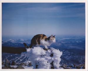 Mt. Washington- windiest place on earth on a rare windless day