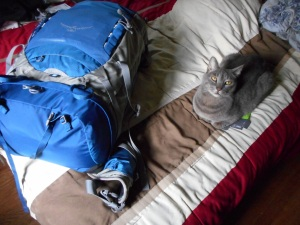 ready to leave Squirrel cat poses next to my pack