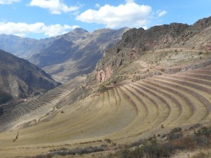 terraces follow the contours around the mountain