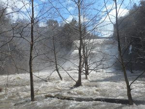 Ithaca Falls in full fury of falling snow melt