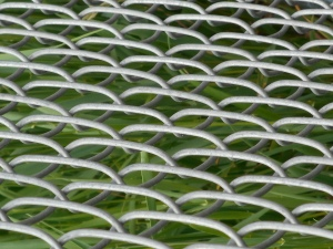 the chain link fence holding back the weeds