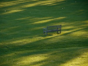 evening light stretches across  the fresh cut lawn