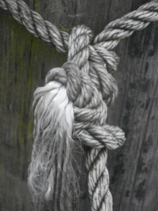 knotted at the docks my thoughts too...