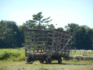 hay wagon at rest, waiting for the next load