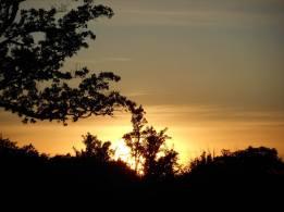 sunset 6-6-16 -10