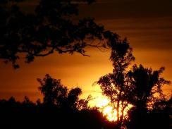 sunset 6-6-16 -8