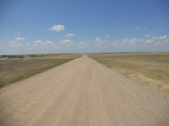 Badlands road to the horizon