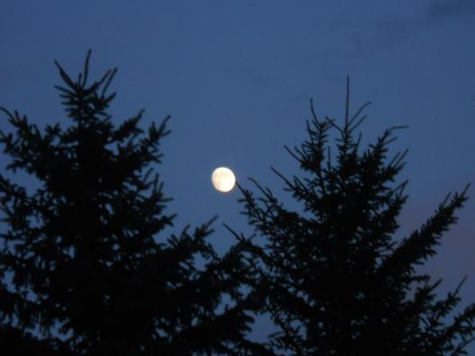 moon-tonight-not-quite-full-on-my-bike-road-home-from-work-awhile-ago-9-27-12