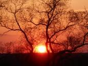 sunset-5-3-15-x