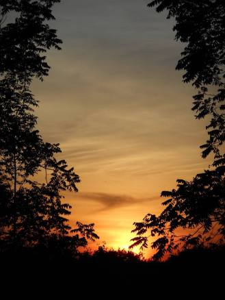 Sunset tonight up by the horse barn- tennis center off Pine Tree Rd. 7-28-15-d