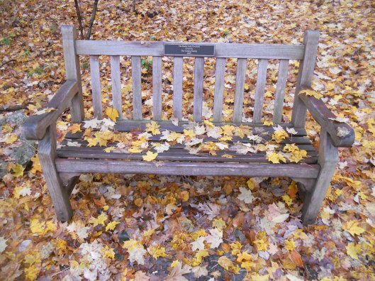 bench behind Mann Library yesterday 10-24-12.jpg