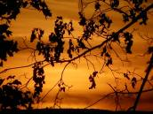 sunset-sublimity