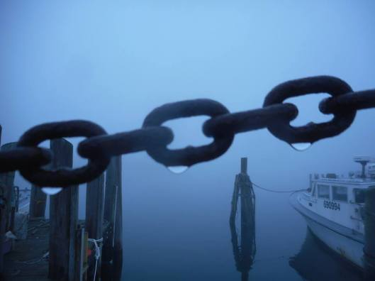 chain-dripping-a-thick-fog-from-last-may-on-the-docks-in-narragansett-rhode-island