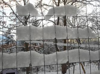 snow-held-in-the-fence-cells