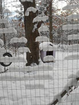 snow-through-the-fence-grid