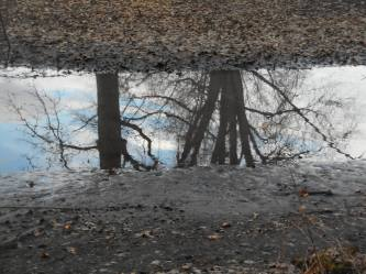 broadband-reflections-across-my-mind