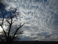 cloud-reverie