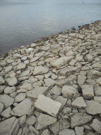 stewart-park-shore-line-rocks-at-low-ebb