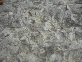 stone-surface