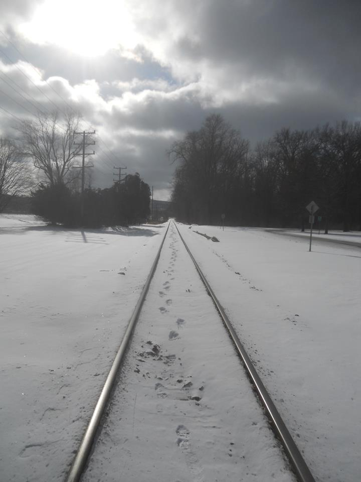 walking-the-tracks-my-thoughts-go-nowhere-stewart-park-1-22-14-below-zero