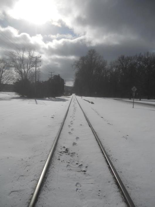 walking-the-tracks-my-thoughts-go-nowhere-stewart-park-1-22-14-below-zero