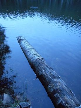 Adirondacks- Pharaoh Lake- Mtn. area which passes by many beautiful ponds, lakes, wetland marshes and streams...these photos were from Sunday night. 5-24-15 a