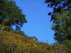 blue sky gap...