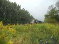 early autumn a freight passes through the goldenrod