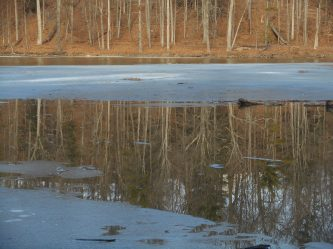 Beebe Lake reflection through the melting ice