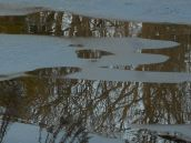 ice breaks open for reflections...