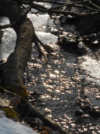 brook beside our house with Late afternoon sun sparkling .. parts of the creek are still frozen and the open water goes under ice in places but was running nicely this afternoon... 3-19-