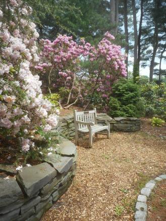 Cornell Botanic Garden bench 6-6-17-